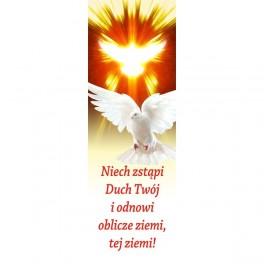 Niech zstąpi Duch Twój i odnowi oblicze ziemi!
